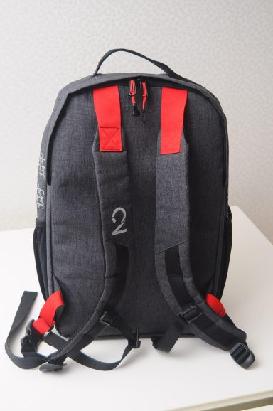Pannier Backpack Back