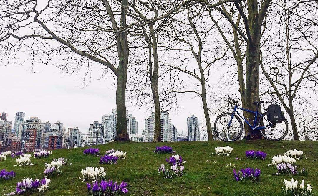 Bike to Work - Reduce Carbon Footprint